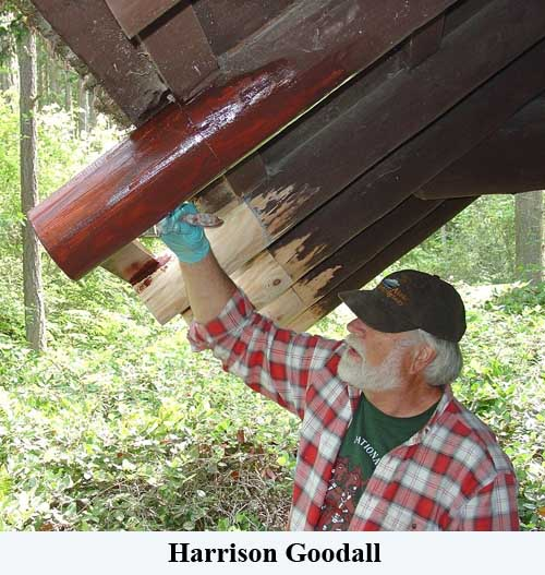 Harrison Goodall staining rafter tails after ConServ Epoxy